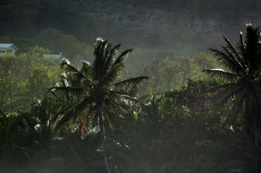 lieux incontournables à visiter à la Martinique